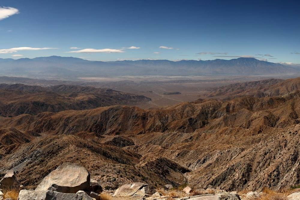 Coachella Valley, Joshua Tree. By Mfield, Matthew Field, http://www.photography.mattfield.com - Own work, CC BY-SA 3.0, https://commons.wikimedia.org/w/index.php?curid=4951866